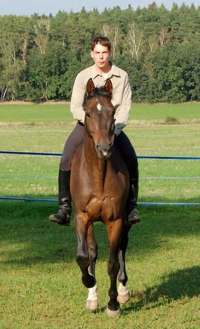 Proč jezdit na koni bez sedla