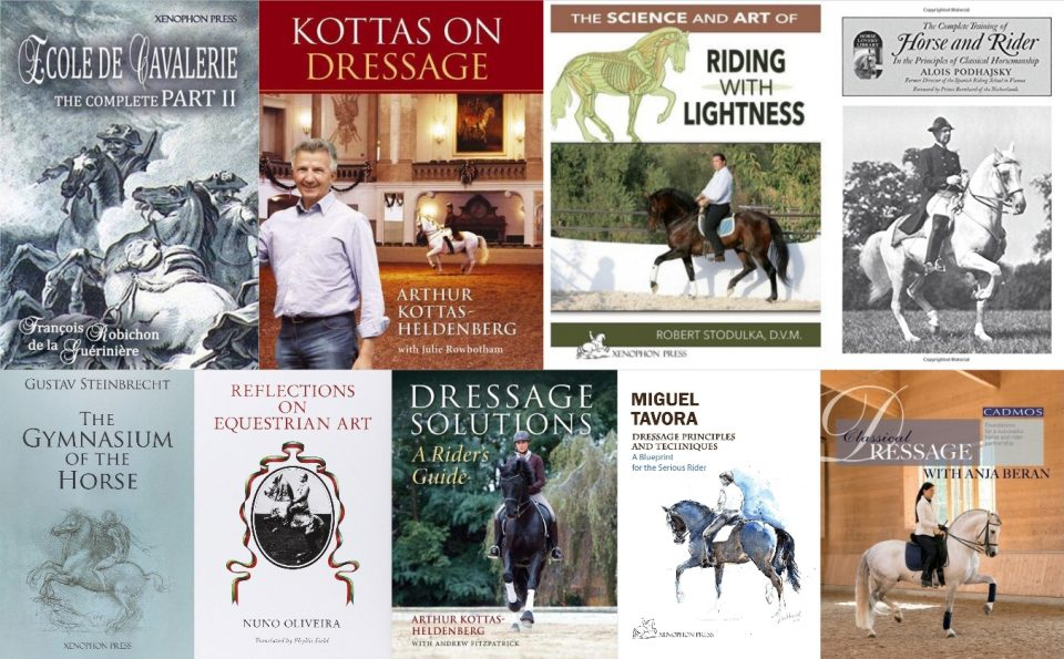 Top 10 knih o drezuře