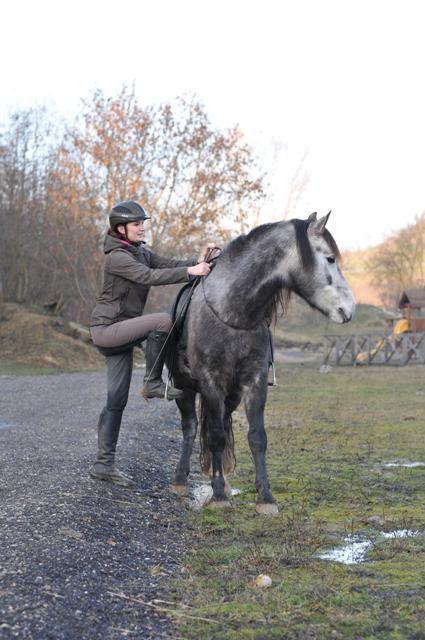 Jak nasednout na koně a napáchat tím co nejméně škody