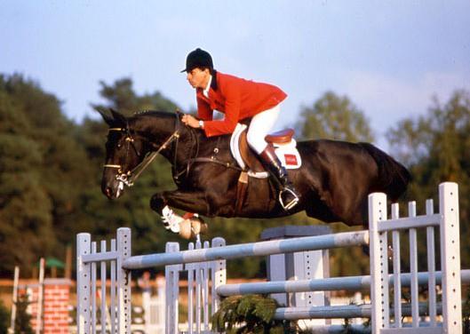 Jappeloup – aneb jak se malý neposlušný kůň stal francouzskou legendou