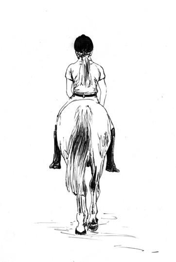 Jezdec nebojácný