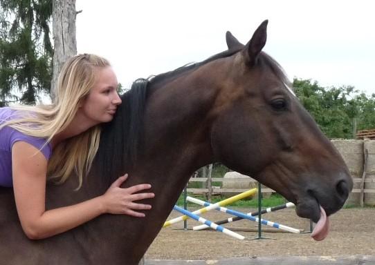 Kůň nebo kolo?