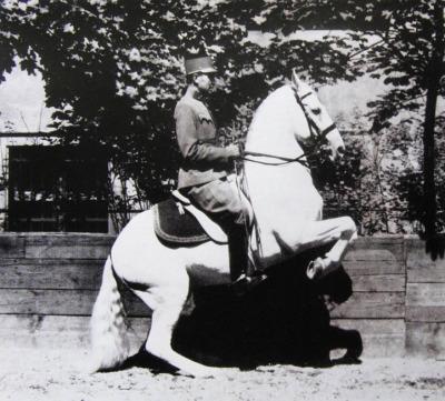 Plukovník Alois Podhajský – inspirujte se skutečnými mistry