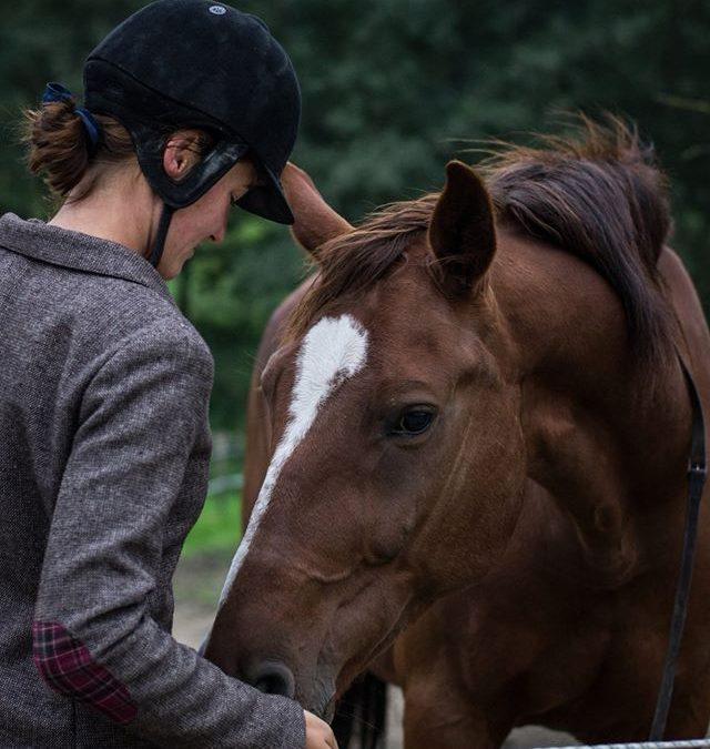 """PODCAST: """"Koně s námi chtějí spolupracovat"""" rozhovor s MVDr. Helenou Pokorovou"""